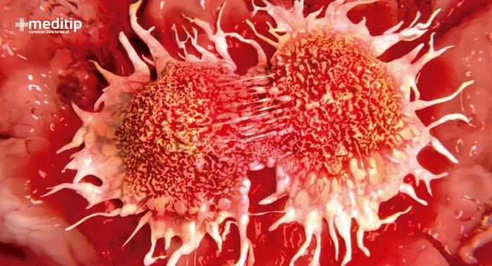Recurrencia del cáncer: división de células cancerosas