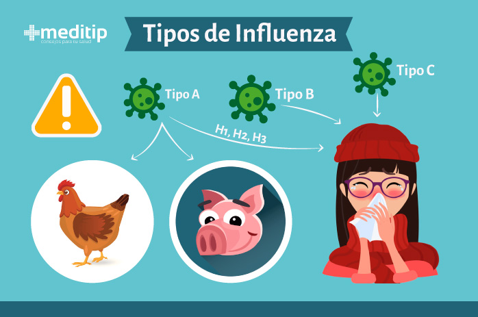 Contagio de la influenza: tipos de influenza